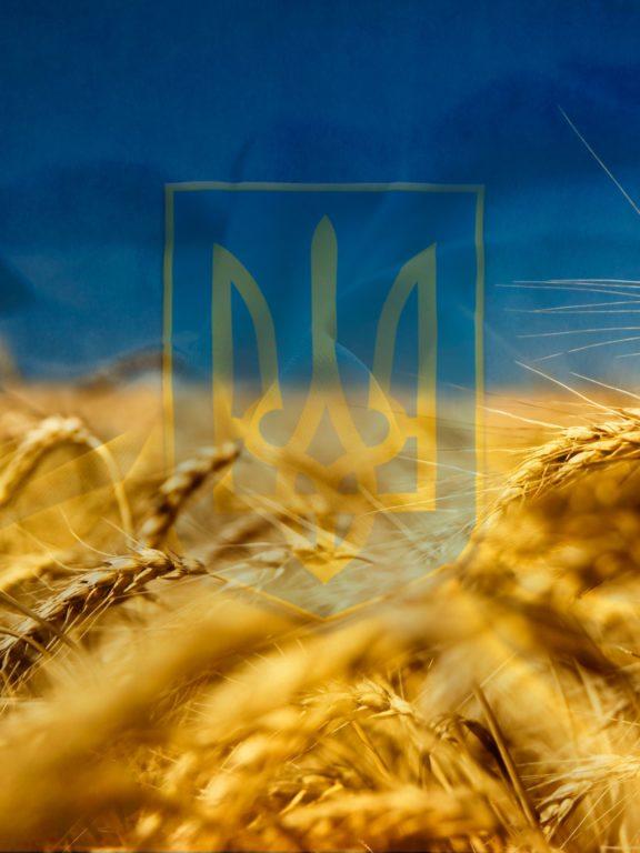Найкращі привітання з Днем захисника України своїми словами